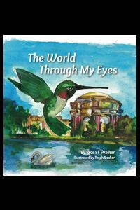The World Through My Eyes